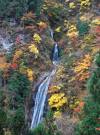 埼玉県 両神山麓キャンプ場 の写真g58